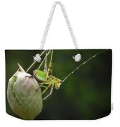 Katydid Weekender Tote Bag