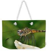 Austrogomphus Dragonfly Weekender Tote Bag