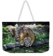 Lion Drinking Water Weekender Tote Bag
