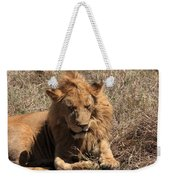 Lions Of The Ngorongoro Crater - Tanzania Weekender Tote Bag
