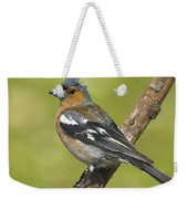 Male Chaffinch Weekender Tote Bag