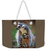Mother And Baby Monkey Weekender Tote Bag