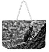 Squirrel In The Park V3 Weekender Tote Bag