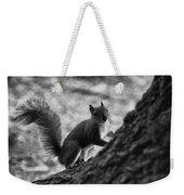 Squirrel In The Park V4 Weekender Tote Bag