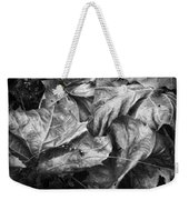 Sycamore Leaves In Autumn Weekender Tote Bag