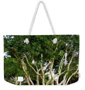 Trees In A Suburban Neighborhood In Summer Weekender Tote Bag
