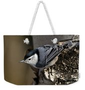 White-breasted Nuthatch Pictures 35 Weekender Tote Bag