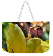 001 For The Cactus Lover In You Buffalo Botanical Gardens Series Weekender Tote Bag