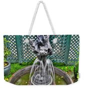001 Fountain Buffalo Botanical Gardens Series Weekender Tote Bag