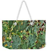 002 For The Cactus Lover In You Buffalo Botanical Gardens Series Weekender Tote Bag