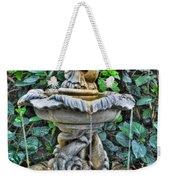 002 Fountain Buffalo Botanical Gardens Series Weekender Tote Bag