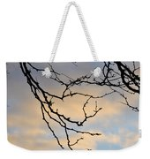 003 Cotton Candy Skies With A Lil Snow Weekender Tote Bag