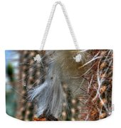 004 For The Cactus Lover In You Buffalo Botanical Gardens Series Weekender Tote Bag