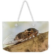 01 New Forest Cicada  Weekender Tote Bag