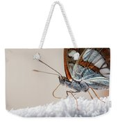 01 Southern White Admiral Butterfly Close Up Weekender Tote Bag