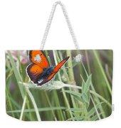 02 Balkan Copper Butterfly Weekender Tote Bag