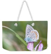 02 Common Blue Butterfly Weekender Tote Bag