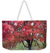 0277 Blazing Red Weekender Tote Bag