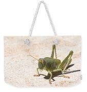 03 Egyptian Locust Grasshopper Weekender Tote Bag