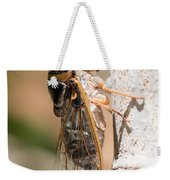 03 New Forest Cicada  Weekender Tote Bag