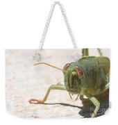 04 Egyptian Locust Grasshopper Weekender Tote Bag