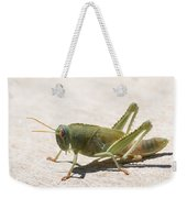 05 Egyptian Locust Grasshopper Weekender Tote Bag