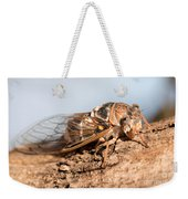 05 New Forest Cicada  Weekender Tote Bag