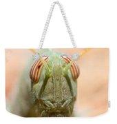06 Egyptian Locust Grasshopper Weekender Tote Bag