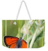 07 Balkan Copper Butterfly Weekender Tote Bag