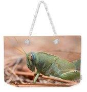 08 Egyptian Locust Grasshopper Weekender Tote Bag