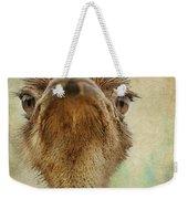 Ostrich Closeup Weekender Tote Bag