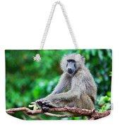 A Baboon In African Bush Weekender Tote Bag