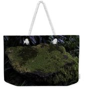 A Moss Covered Stone Inside The National Orchid Garden In Singapore Weekender Tote Bag
