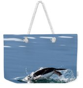 A Penguin Swims Through The Clear Weekender Tote Bag