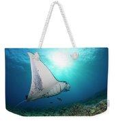 A Reef Manta Ray  Manta Alfredi Weekender Tote Bag