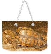 African Spur Thigh Tortoise Weekender Tote Bag