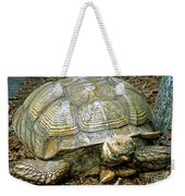 African Spurred Tortoise Weekender Tote Bag