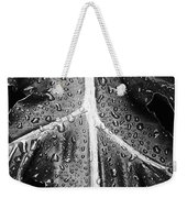 After The Rain - Bw Weekender Tote Bag