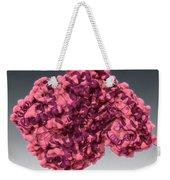 Alanine Transaminase, Molecular Model Weekender Tote Bag