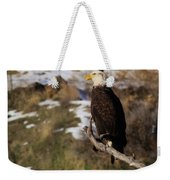 An Eagle Perched   Weekender Tote Bag