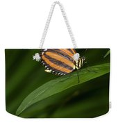 An Isabella Butterfly Eueides Isabella Weekender Tote Bag