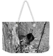 An Old Mill Stone Ely's Mill Roaring Fork Bw Weekender Tote Bag