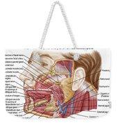 Anatomy Of Human Salivary Glands Weekender Tote Bag
