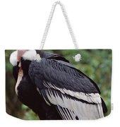 Andean Condor Male Cayambe Ecuador Weekender Tote Bag