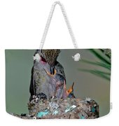 Annas Hummingbird Feeding Young Weekender Tote Bag