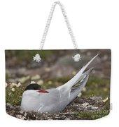 Arctic Tern In Its Nest Weekender Tote Bag