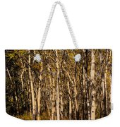 Aspen Forest In Fall Weekender Tote Bag
