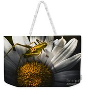 Australian Grasshopper On Flowers. Spring Concept Weekender Tote Bag