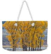 Autumn In The Lamar Weekender Tote Bag