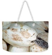 Baby Black Rat Snake Weekender Tote Bag